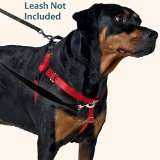 Freedom No-Pull Harness ONLY, Large Black