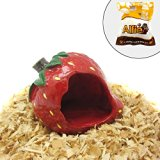 Alfie Pet Small Animal Hideout - Strawberry Hut (Living Habitat for Dwarf Hamster and Mouse)
