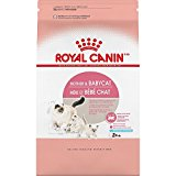 Royal Canin 1Count Feline Health Nutrition mother & Baby Dry Cat Food, 7 lb