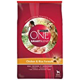 Purina ONE SmartBlend Chicken & Rice Formula Dry Dog Food